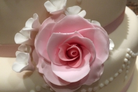 Close up of Delicate Pink roses
